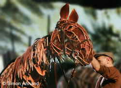 War Horse the stage play.