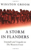 Book - A Storm in Flanders