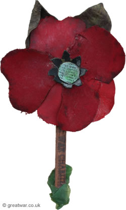 Haig Fund Poppy