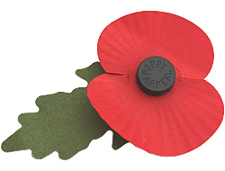 Royal British Legion lapel poppy.