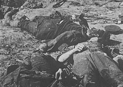 Battlefield casualties of the 1914-1918 war.