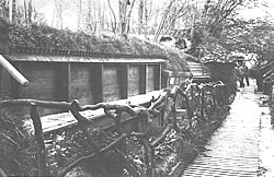 German trenches constructed in Bernafay Wood (Bayernwaldchen) on the 1915 Somme battlefield.