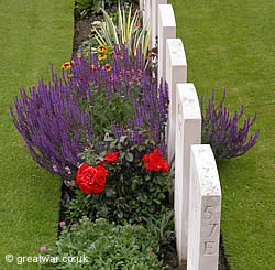 Graves and summer flowers at Tyne Cot cemetery, Passchendaele in the Ypres Salient battlefield.