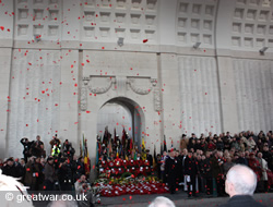 Poppy petals during the 11 November ceremony.